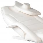 2-Aquarius-electric-beauty-bed